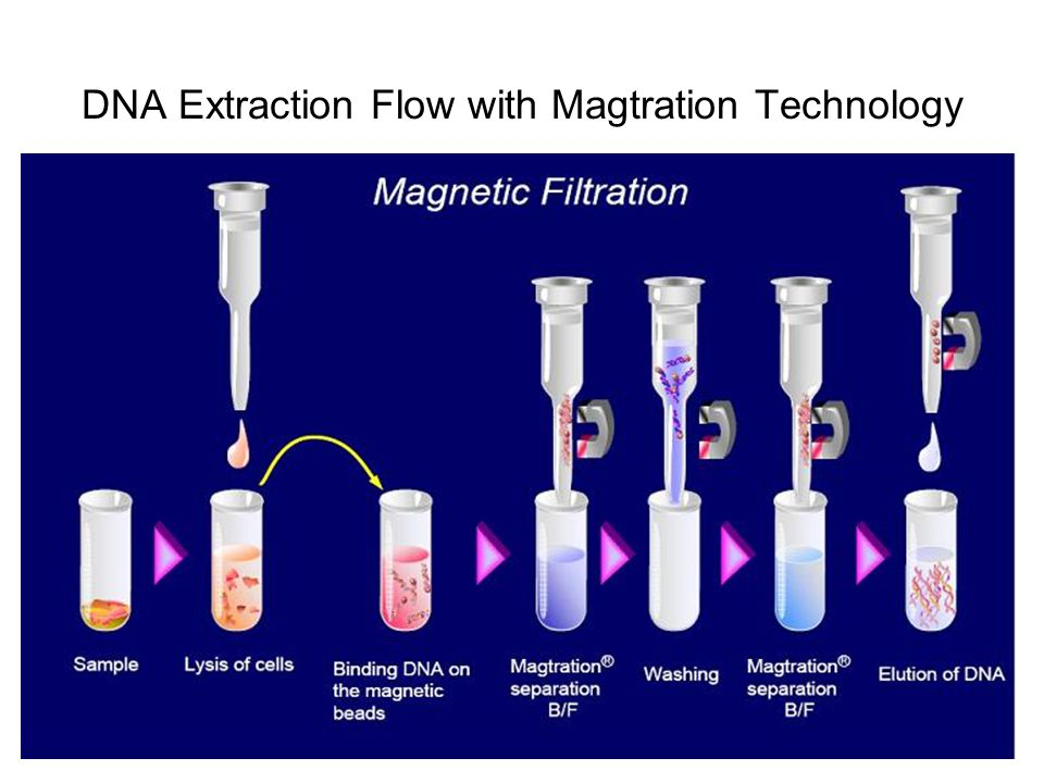 DNA Extraction Flow with Magtration Technology
