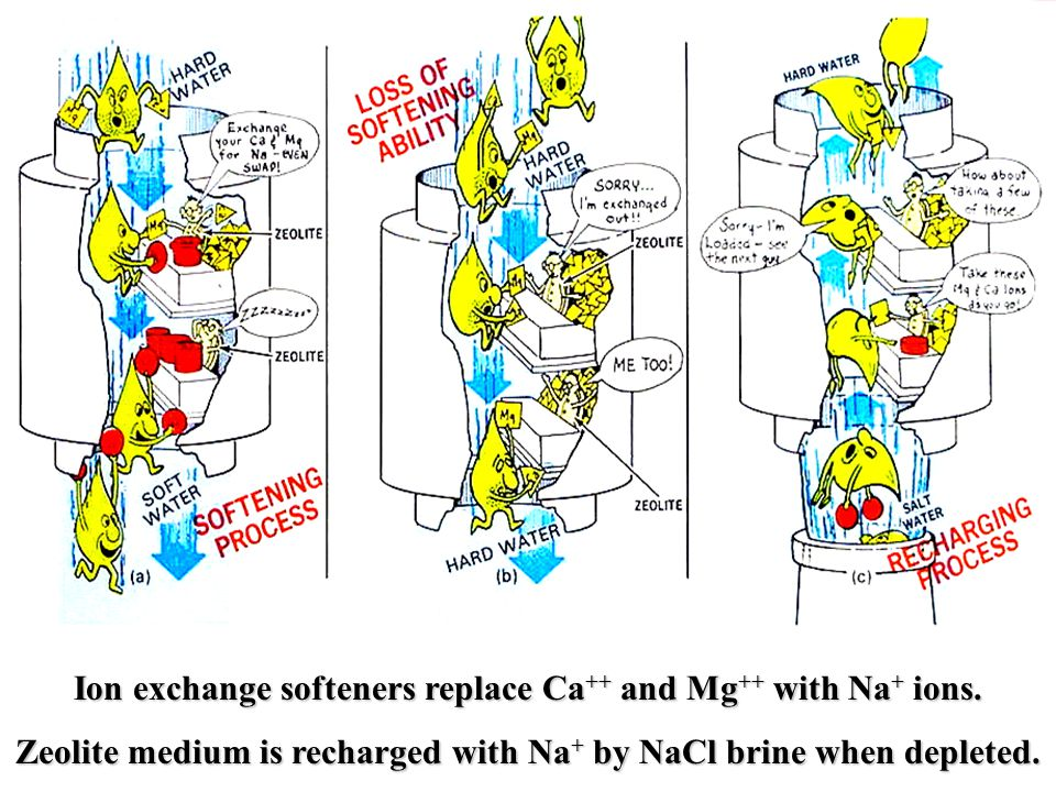 Ion exchange softeners replace Ca++ and Mg++ with Na+ ions.