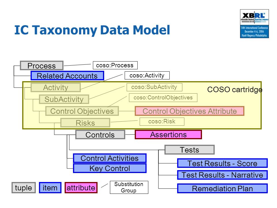 IC Taxonomy Data Model Related Accounts Control Objectives Attribute