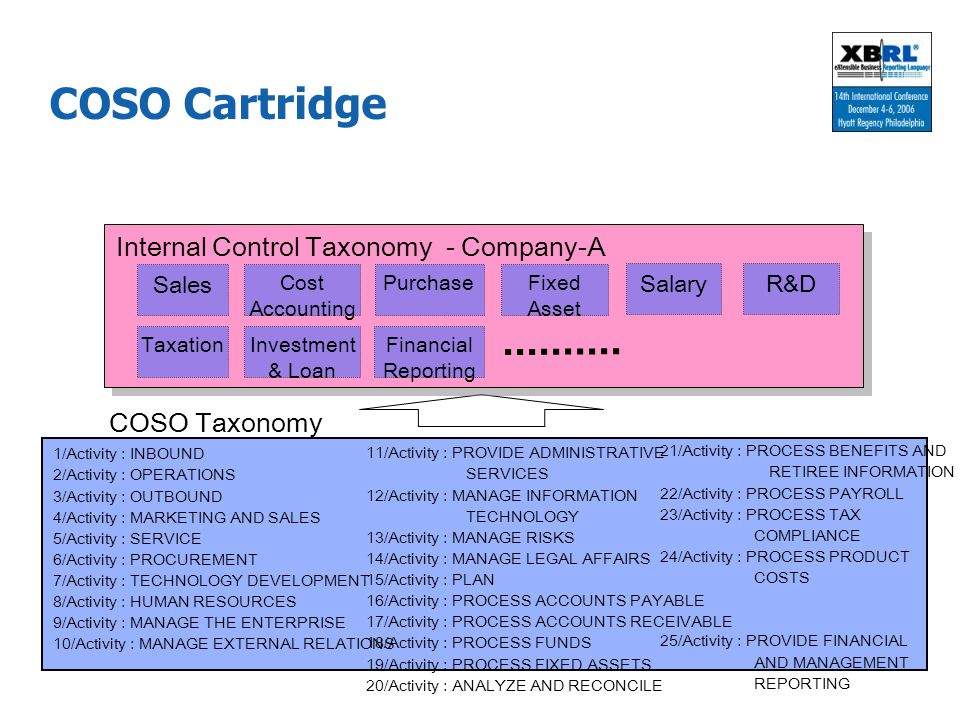 COSO Cartridge Internal Control Taxonomy - Company-A COSO Taxonomy