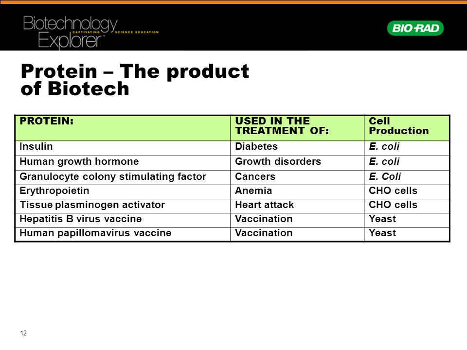 Protein – The product of Biotech