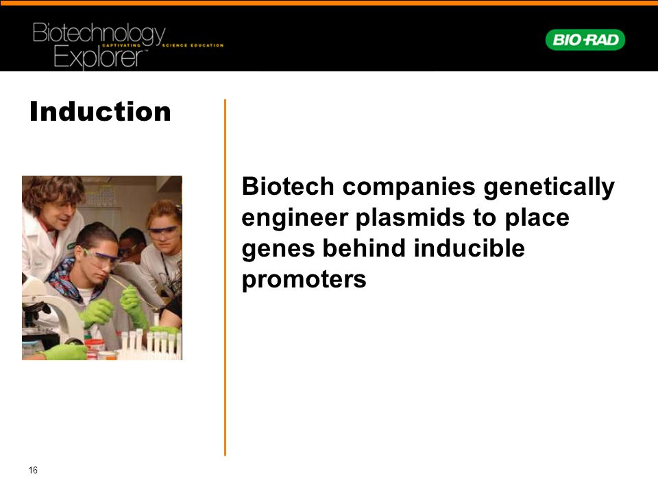 Induction Biotech companies genetically engineer plasmids to place genes behind inducible promoters