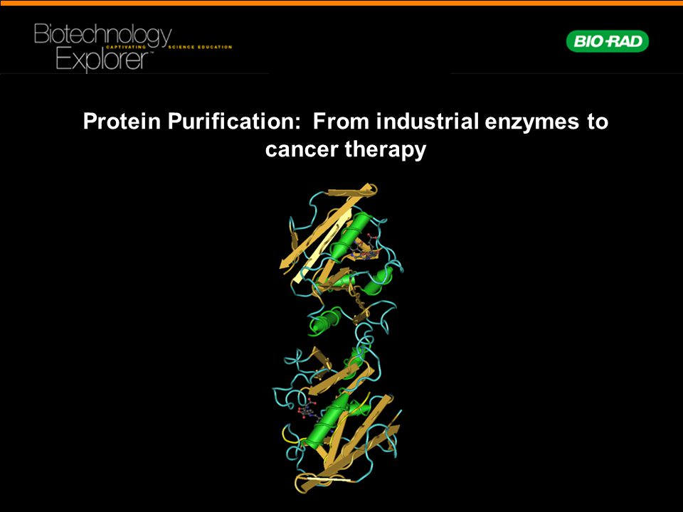 Protein Purification: From industrial enzymes to cancer therapy
