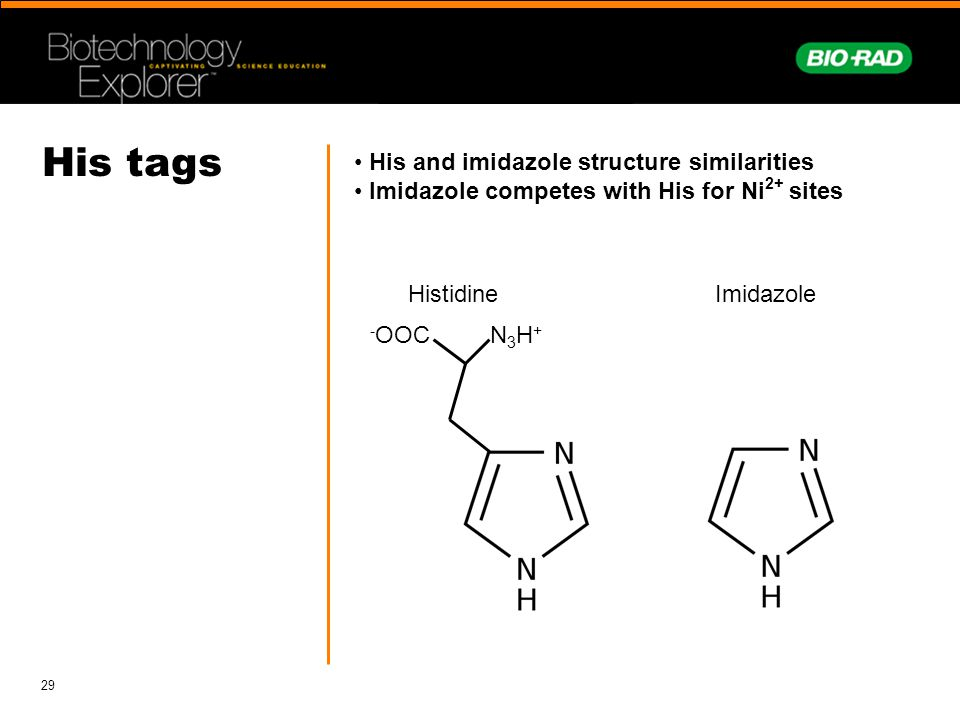 His tags His and imidazole structure similarities
