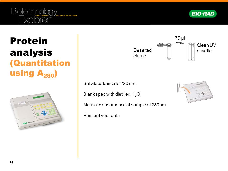 Protein analysis (Quantitation using A280)