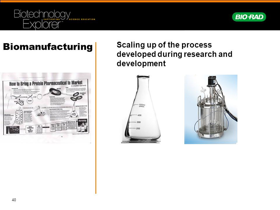 Scaling up of the process developed during research and development