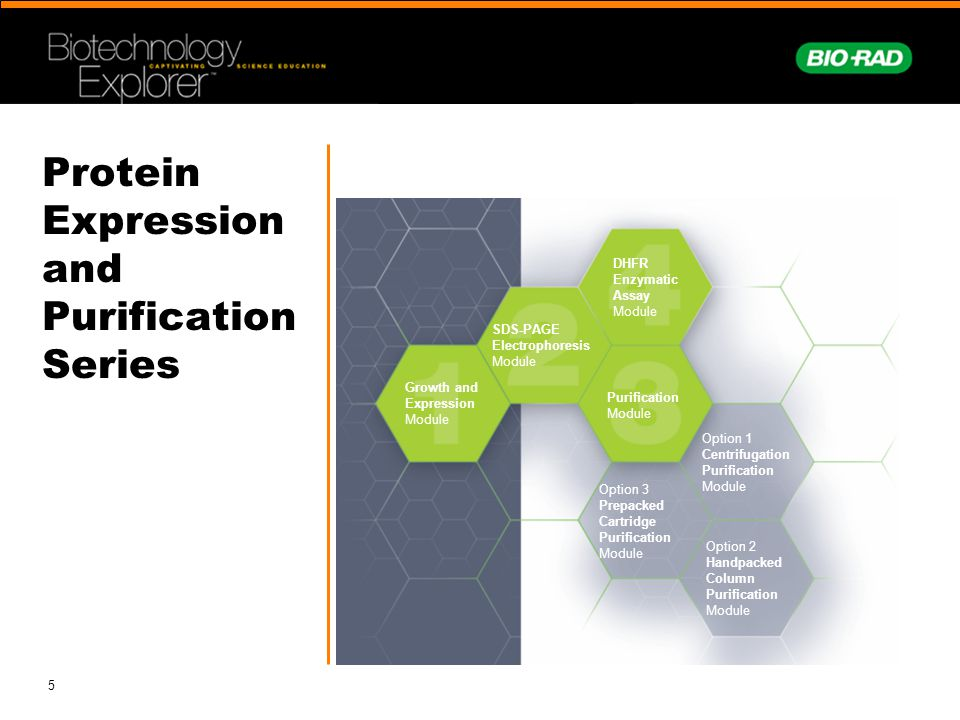 Protein Expression and Purification Series