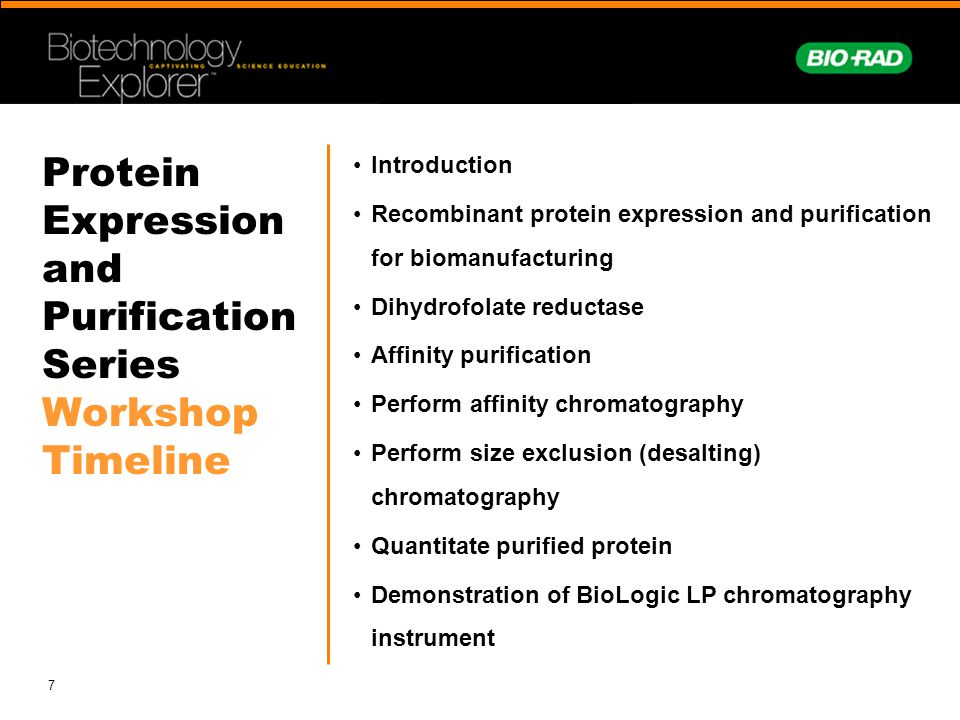 Protein Expression and Purification Series Workshop Timeline