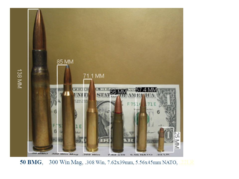 50 BMG, 300 Win Mag, .308 Win, 7.62x39mm, 5.56x45mm NATO, .22LR