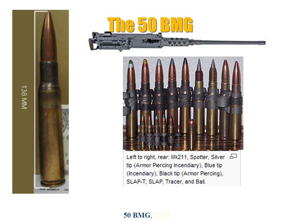 The 50 BMG 50 BMG, 22LR