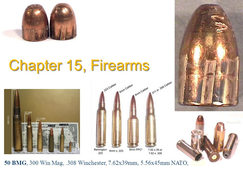 Chapter 15, Firearms From left.