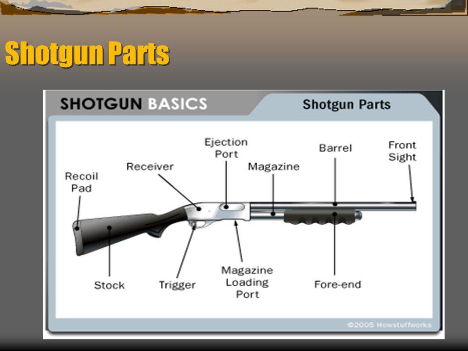 Shotgun Parts