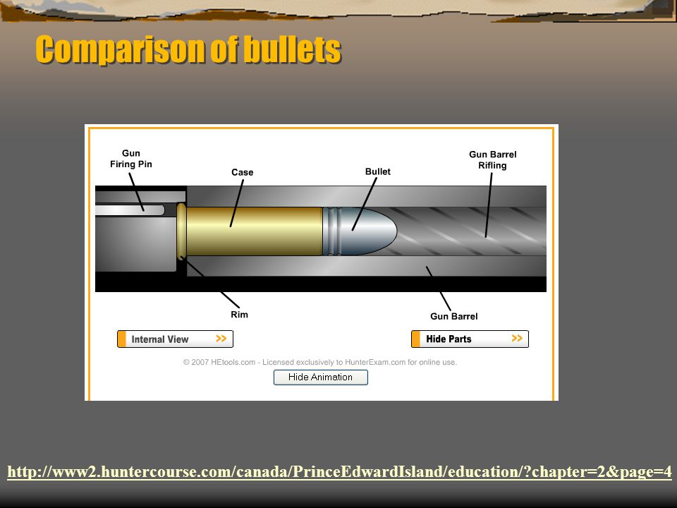 Comparison of bullets http://www2.huntercourse.com/canada/PrinceEdwardIsland/education/ chapter=2&page=4.