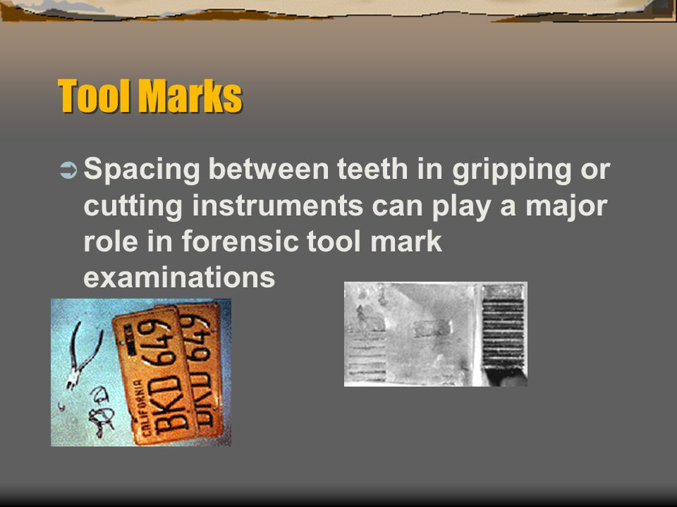 Tool Marks Spacing between teeth in gripping or cutting instruments can play a major role in forensic tool mark examinations