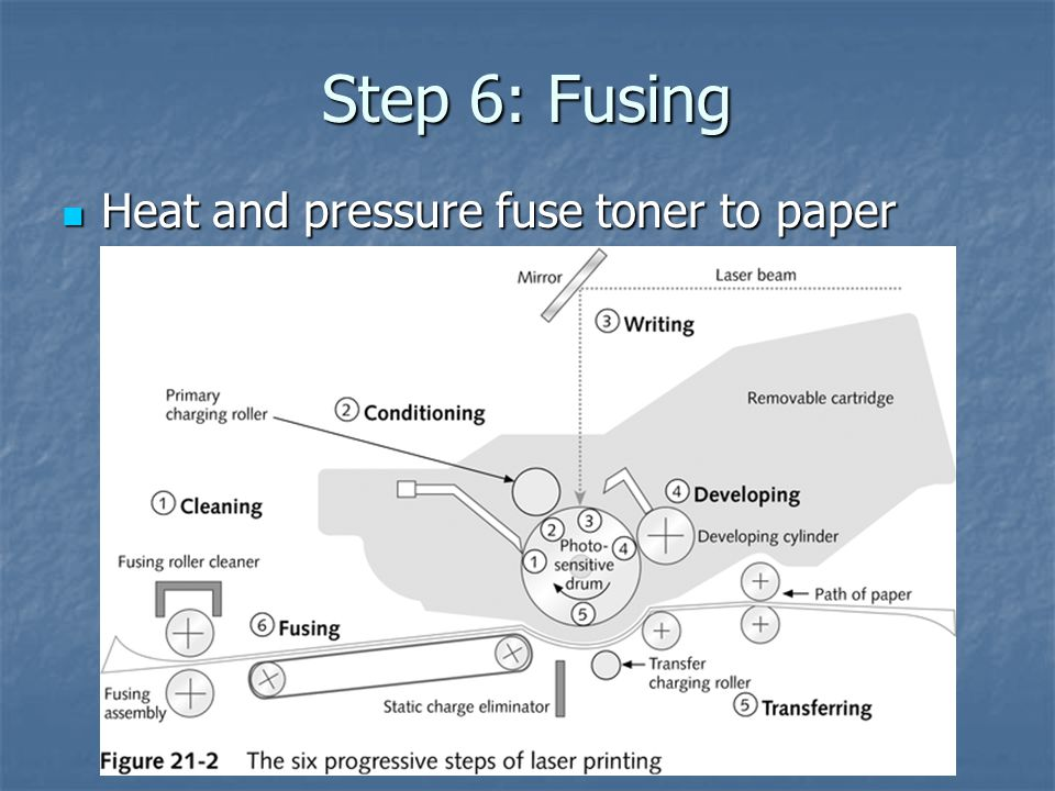 Step 6: Fusing Heat and pressure fuse toner to paper