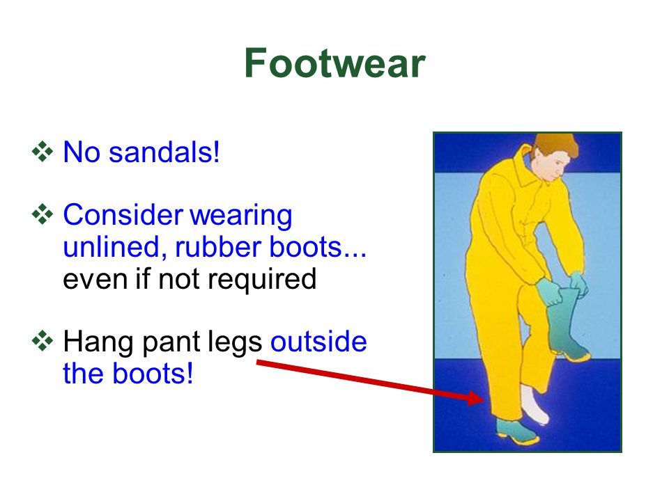 Footwear No sandals! Consider wearing unlined, rubber boots... even if not required. Hang pant legs outside the boots!