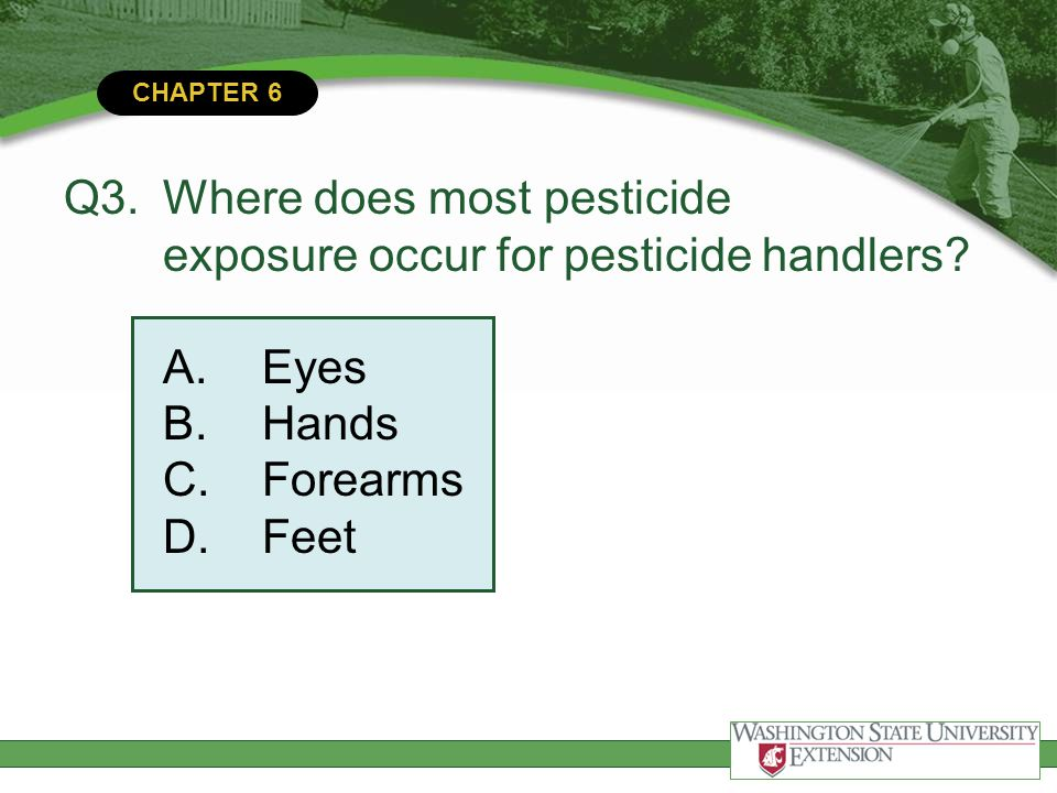 Q3. Where does most pesticide exposure occur for pesticide handlers A. Eyes B. Hands C. Forearms D. Feet