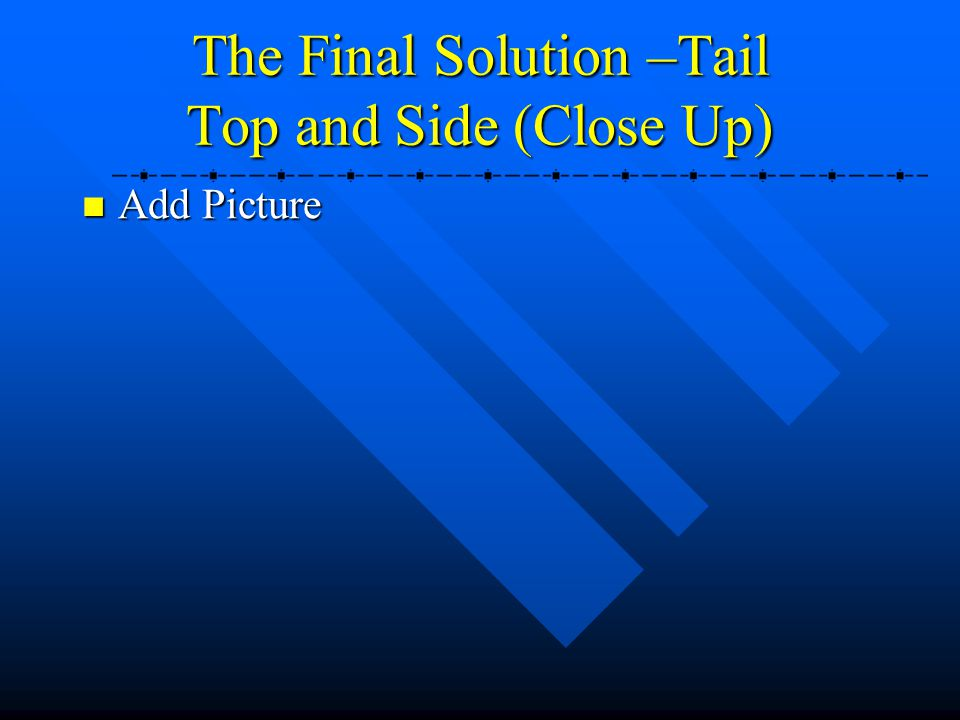 The Final Solution –Tail Top and Side (Close Up)