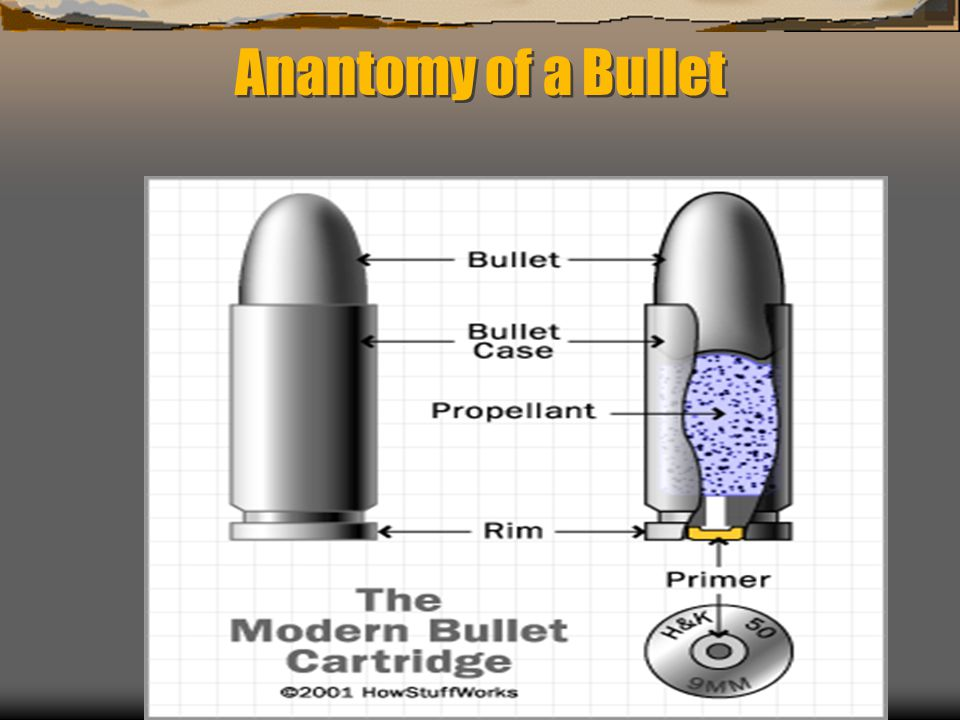 Anantomy of a Bullet