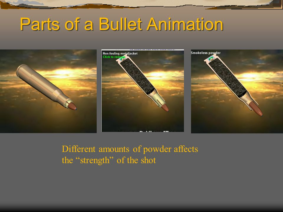 Parts of a Bullet Animation