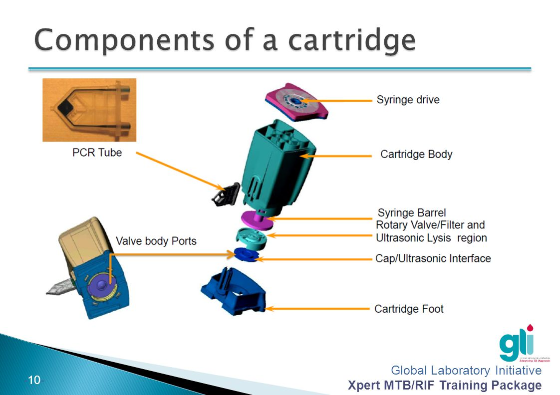 Components of a cartridge