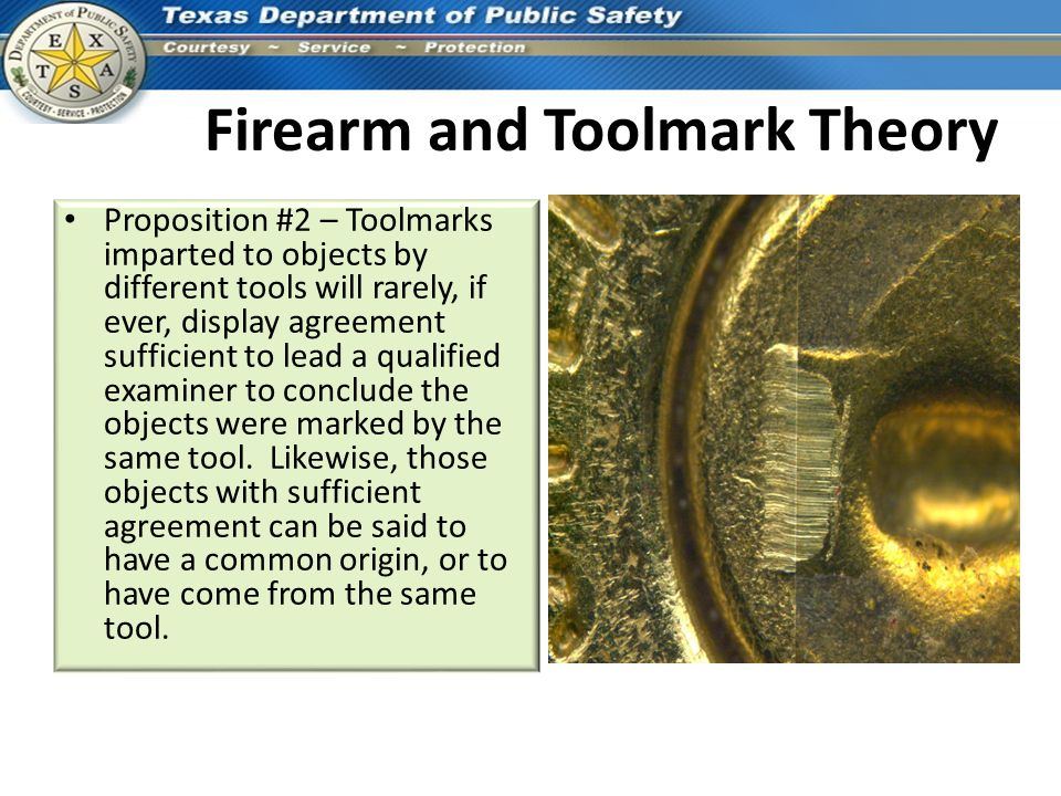 Firearm and Toolmark Theory
