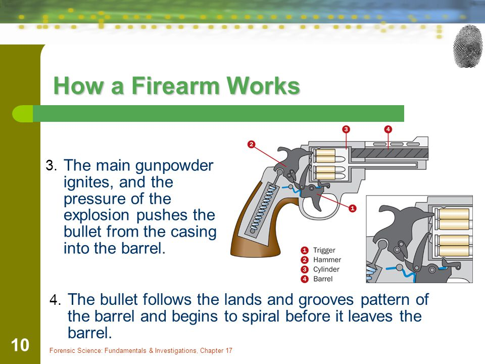 How a Firearm Works The main gunpowder ignites, and the pressure of the explosion pushes the bullet from the casing into the barrel.