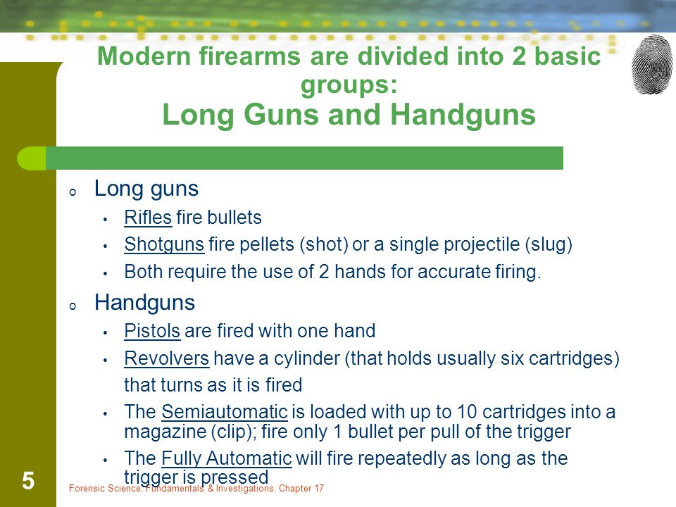 Modern firearms are divided into 2 basic groups: Long Guns and Handguns