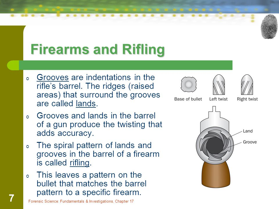 Firearms and Rifling Grooves are indentations in the rifle's barrel. The ridges (raised areas) that surround the grooves are called lands.