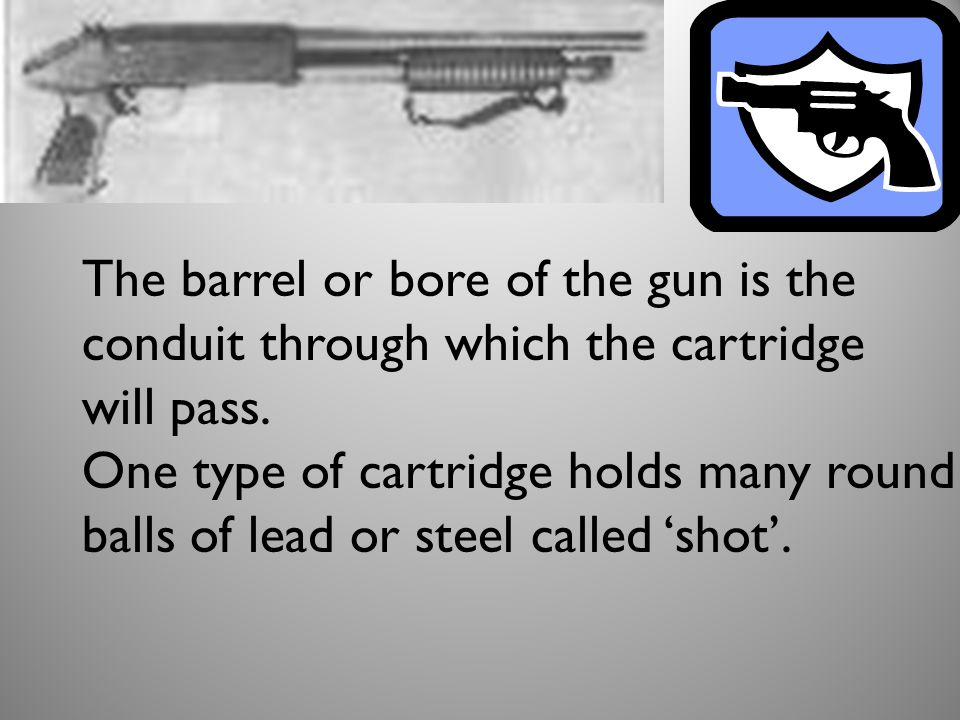 The barrel or bore of the gun is the