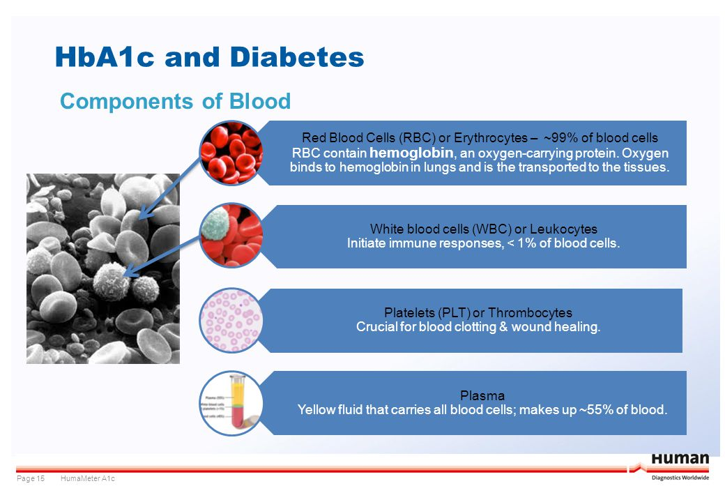 HbA1c and Diabetes Components of Blood