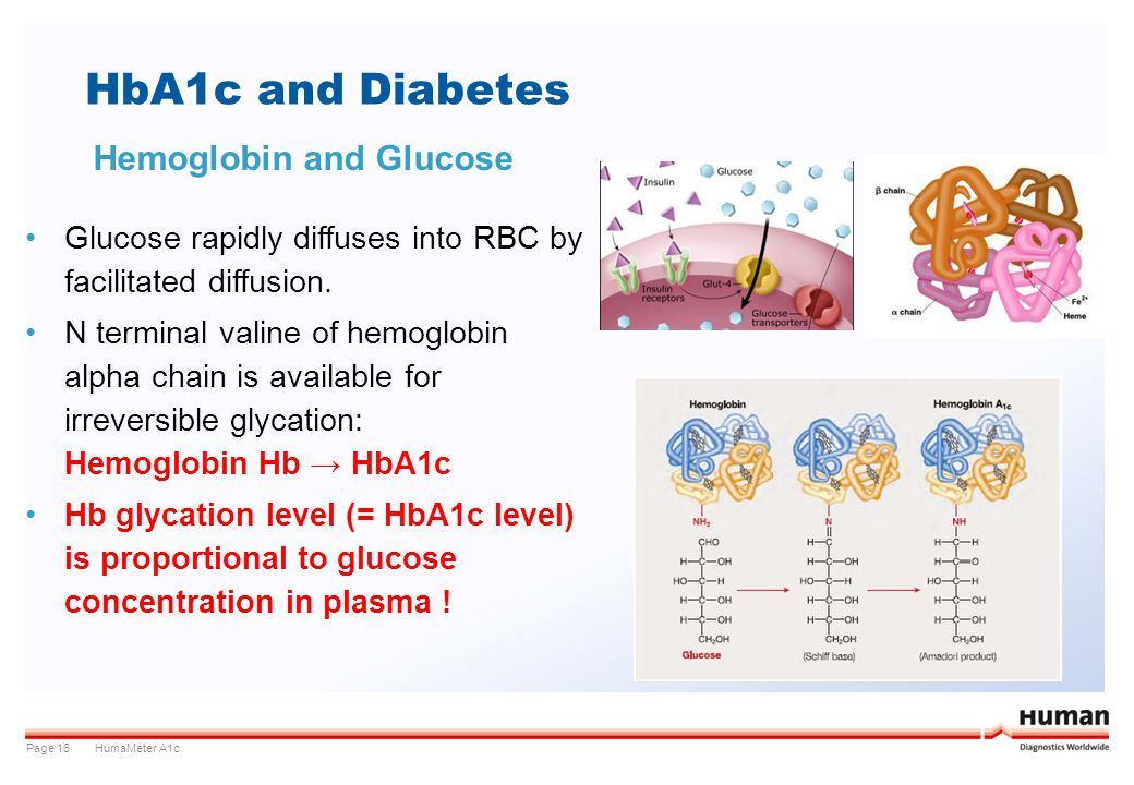 HbA1c and Diabetes Hemoglobin and Glucose