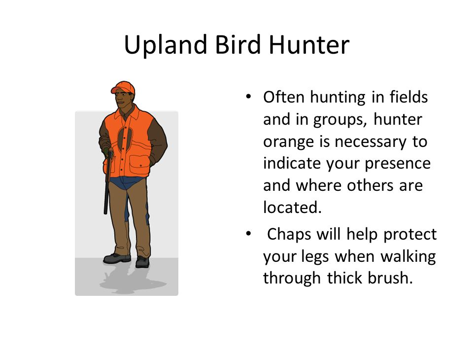 Upland Bird Hunter Often hunting in fields and in groups, hunter orange is necessary to indicate your presence and where others are located.