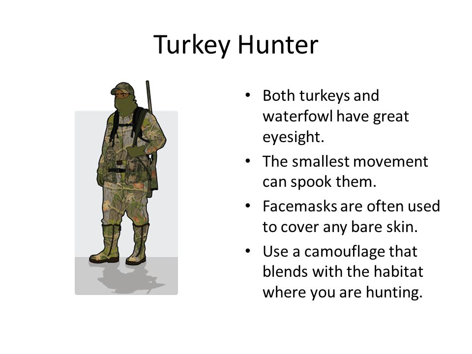 Turkey Hunter Both turkeys and waterfowl have great eyesight.