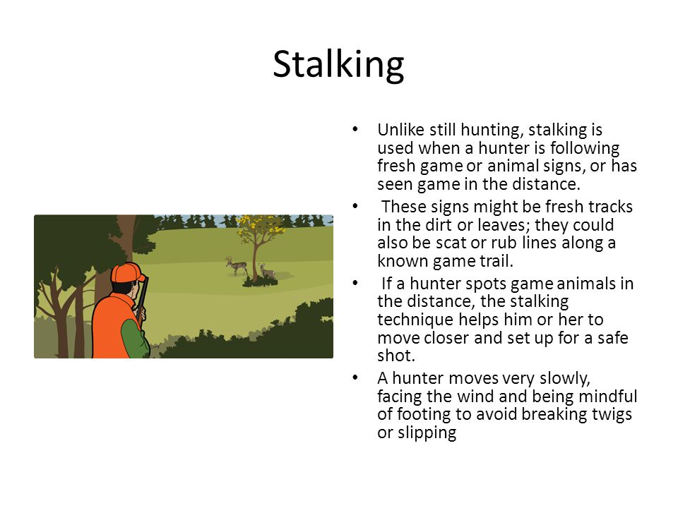 Stalking Unlike still hunting, stalking is used when a hunter is following fresh game or animal signs, or has seen game in the distance.