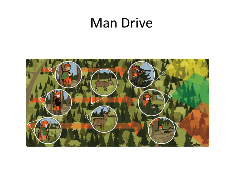 Man Drive