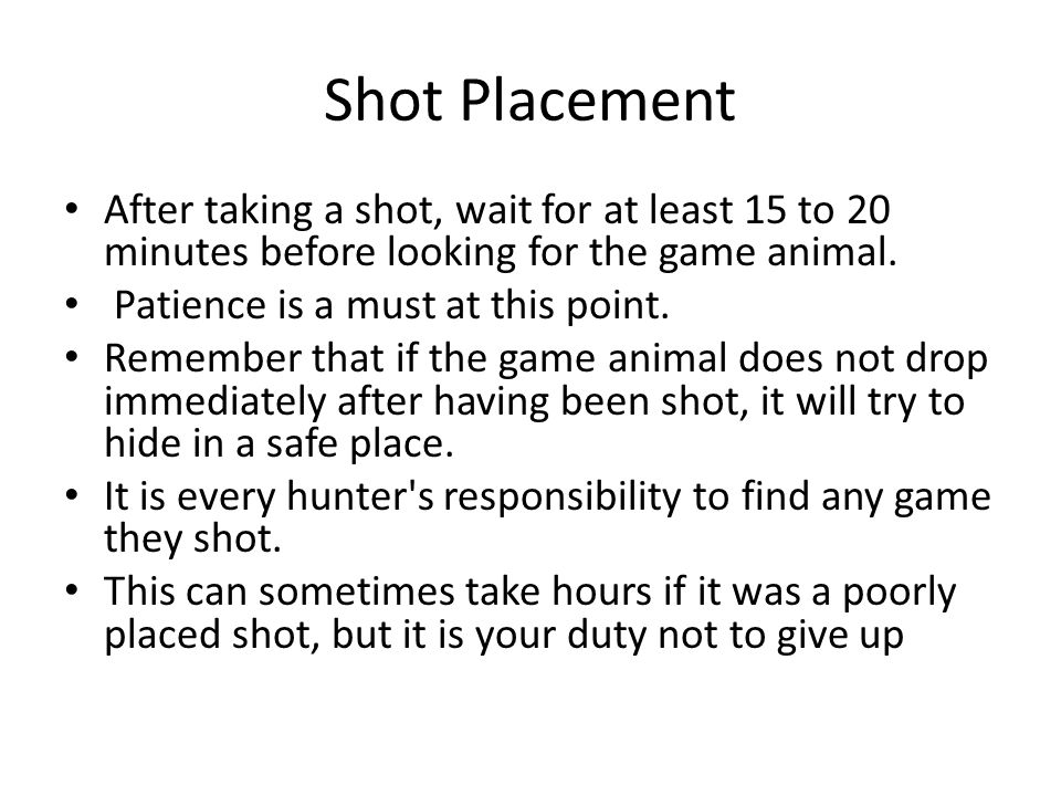 Shot Placement After taking a shot, wait for at least 15 to 20 minutes before looking for the game animal.
