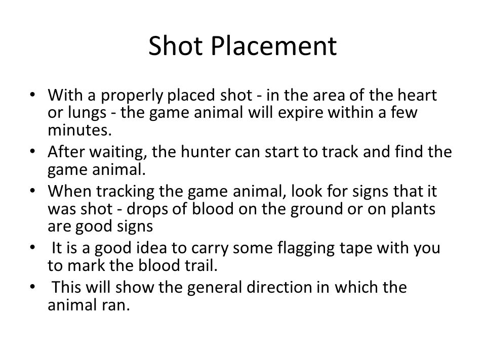 Shot Placement With a properly placed shot - in the area of the heart or lungs - the game animal will expire within a few minutes.