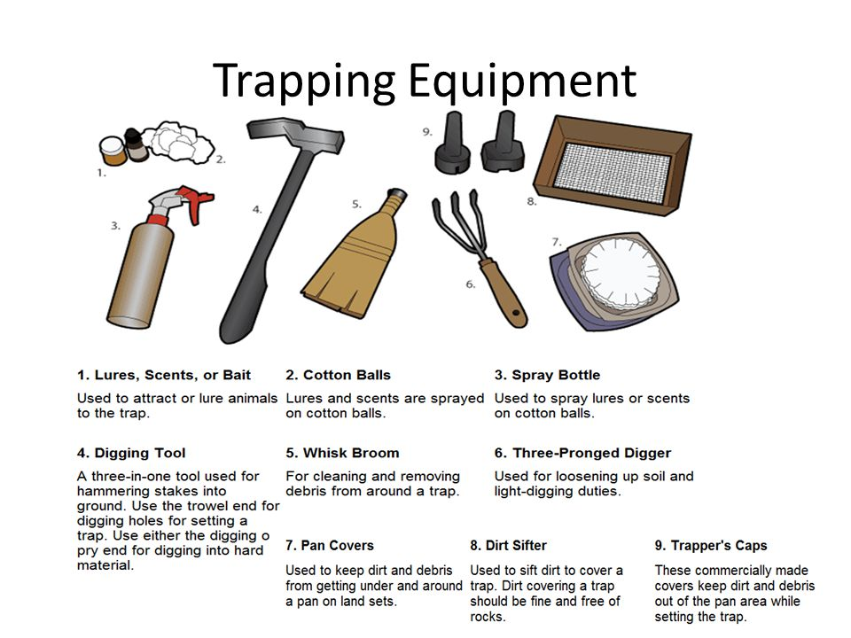 Trapping Equipment