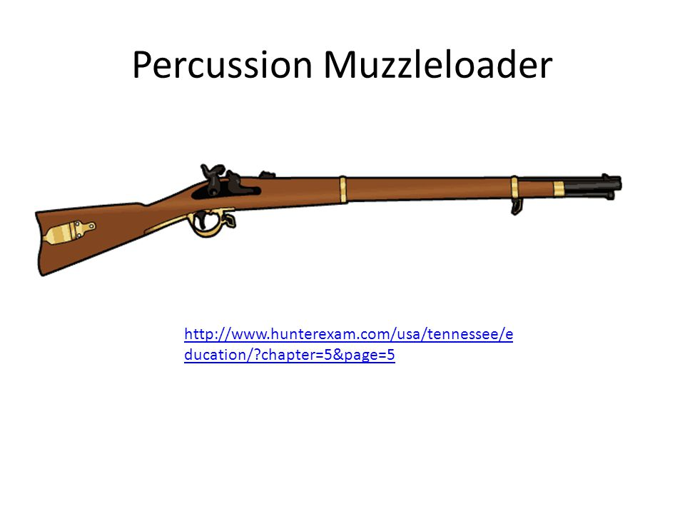Percussion Muzzleloader