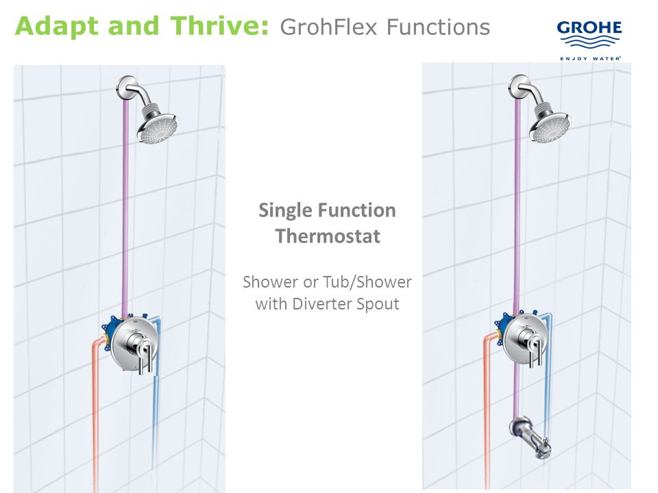 Adapt and Thrive: GrohFlex Functions