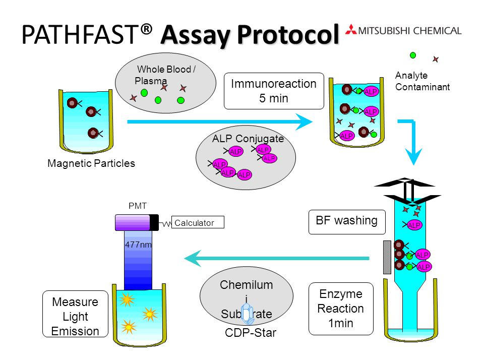 PATHFAST® Assay Protocol
