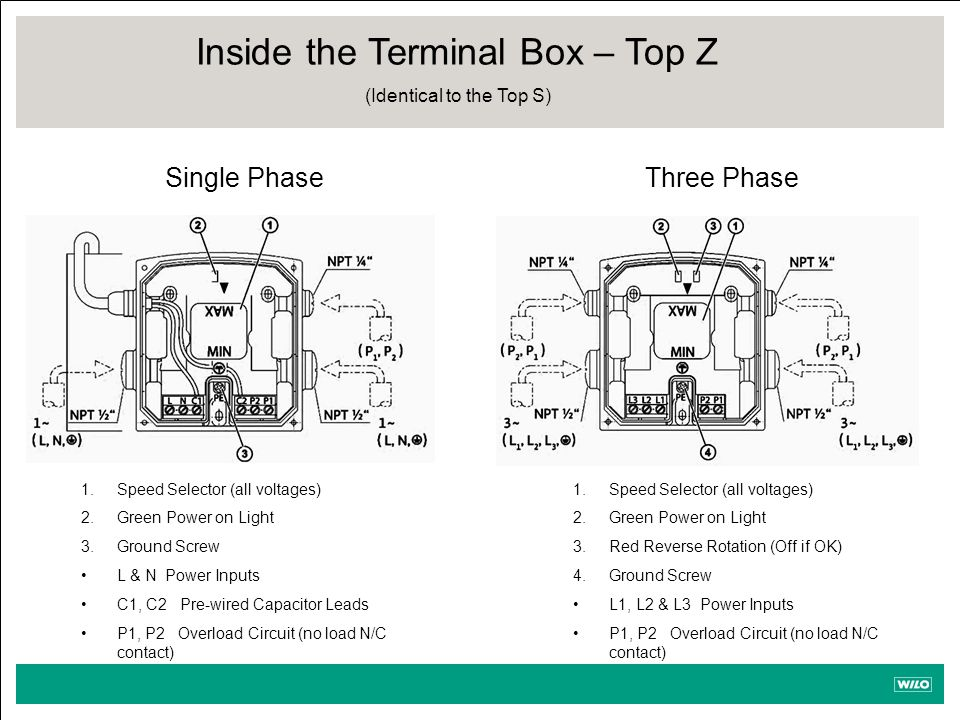 Inside the Terminal Box – Top Z