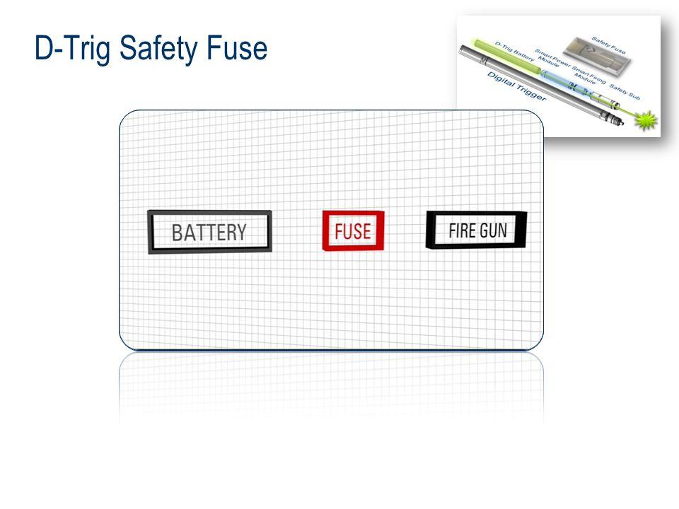 D-Trig Safety Fuse