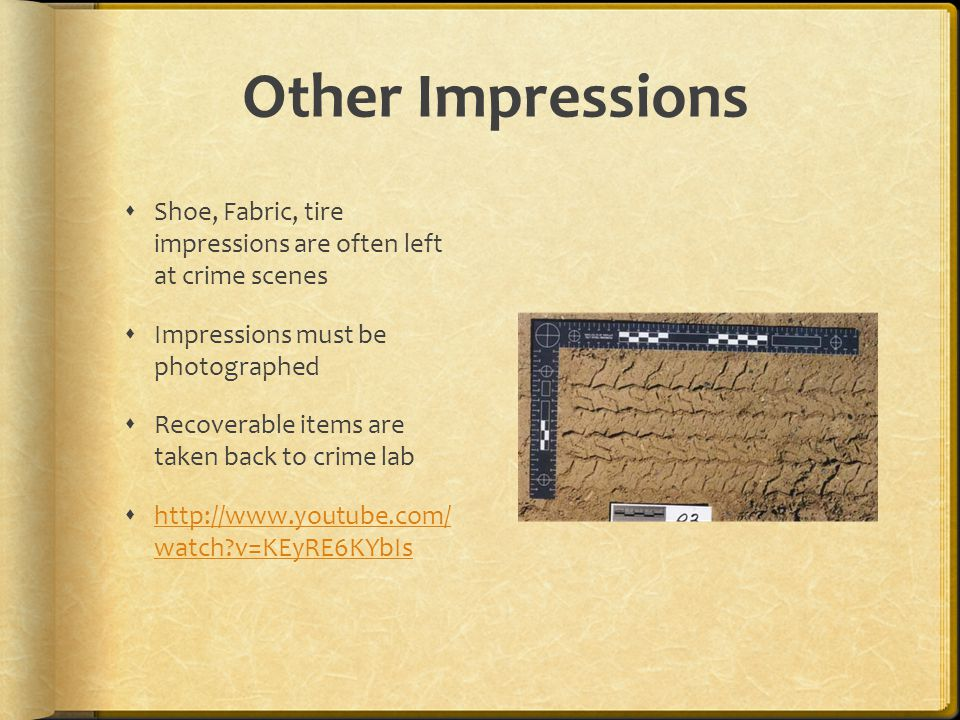 Other Impressions Shoe, Fabric, tire impressions are often left at crime scenes. Impressions must be photographed.