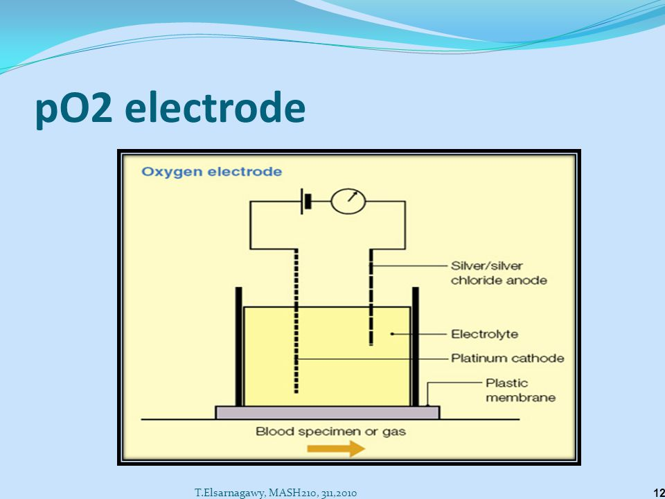 pO2 electrode T.Elsarnagawy, MASH210, 311,2010
