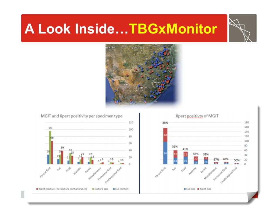 A Look Inside…TBGxMonitor