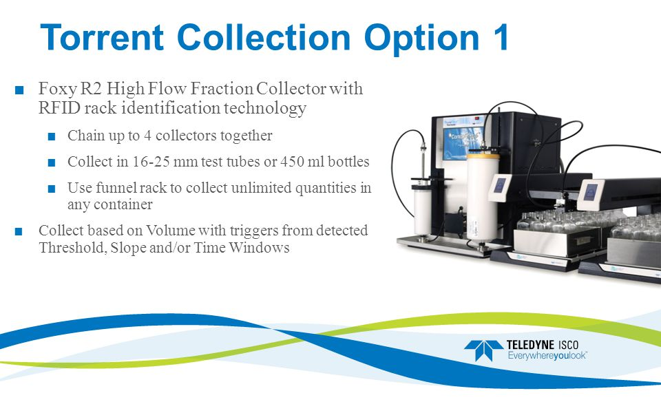 Torrent Collection Option 1