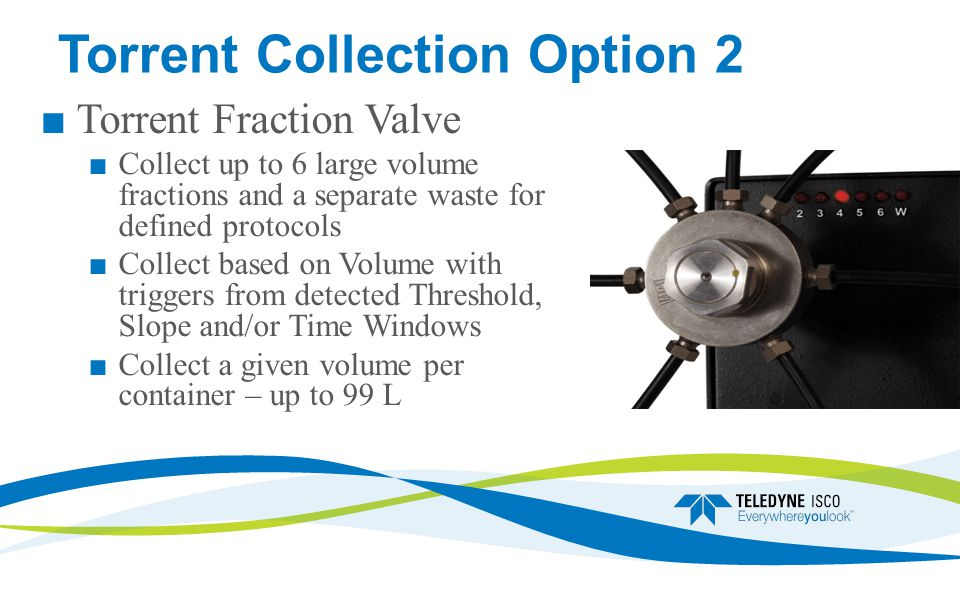Torrent Collection Option 2