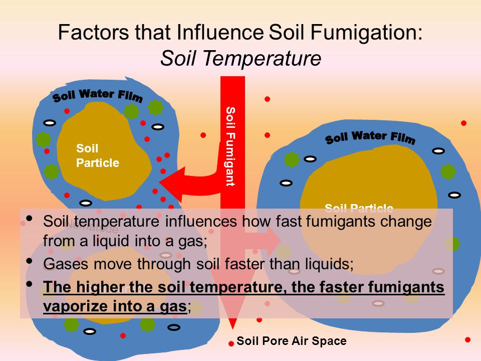 Factors that Influence Soil Fumigation: Soil Temperature